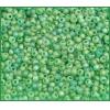 Seedbead Transparent Light Green Matte Aurora Borealis 10/0